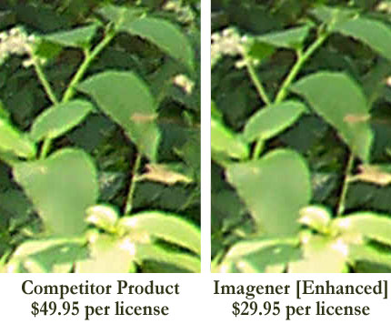 Photo Enhancement Comparison of competitor product and Imagener [Enhanced]